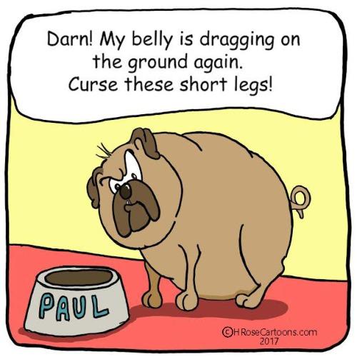 Dragging Belly